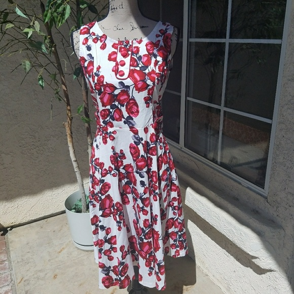 14e82fb93c8f2 Voodoo vixen floral dress size large